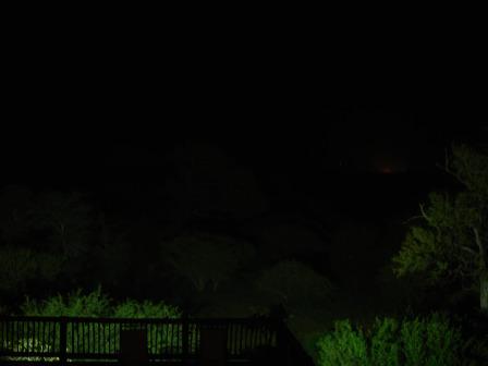 Bushen om natten